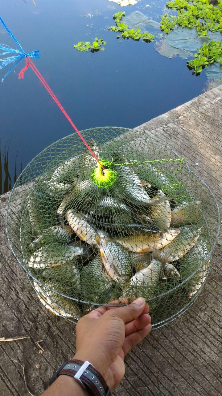 fishingacetwo